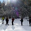 Raquettes sous le Mont Né février 2010 (06)