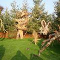 Parc Expo2010- sculpure