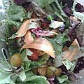 Salade colorée & vitaminée (aux légumes & herbes)