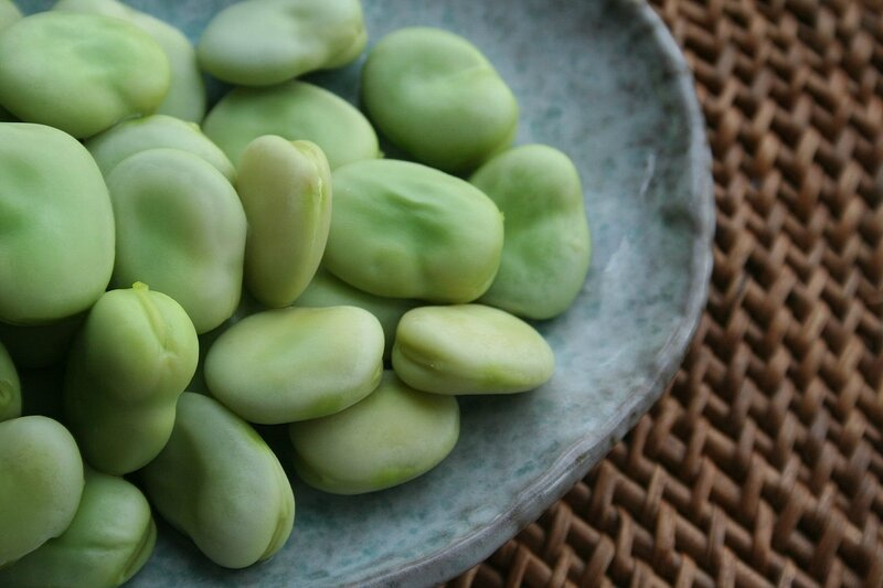 1280px-Broad-beans-after-cooking