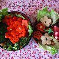 Bento pour le concours « fête des fleurs » de bento addict