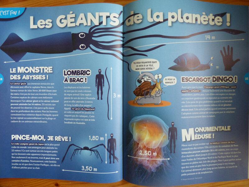 Oiseau Mag Printemps 21 (3)