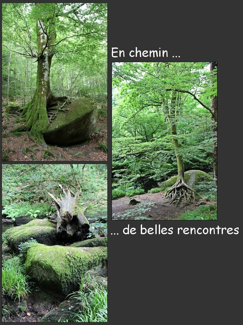 04 rencontres (Large)