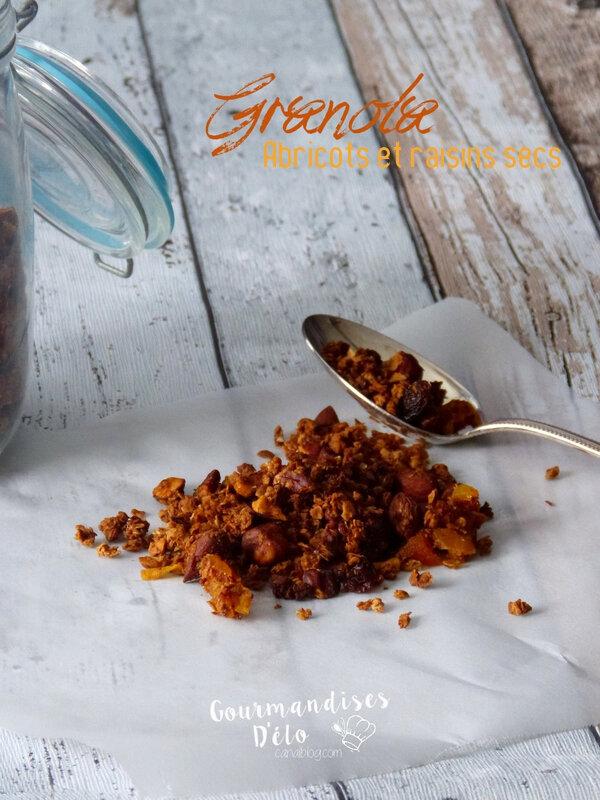 Granola amande noisette, raisin sec et abricot sec (7)