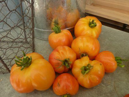 05-tomates joyau d'oaxaca-