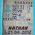 PCS Nathan