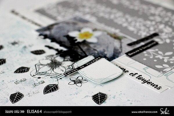 elisa64_PAGE_AOUT3