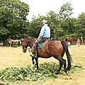 équitation de pleine nature - rallye équestre (101)