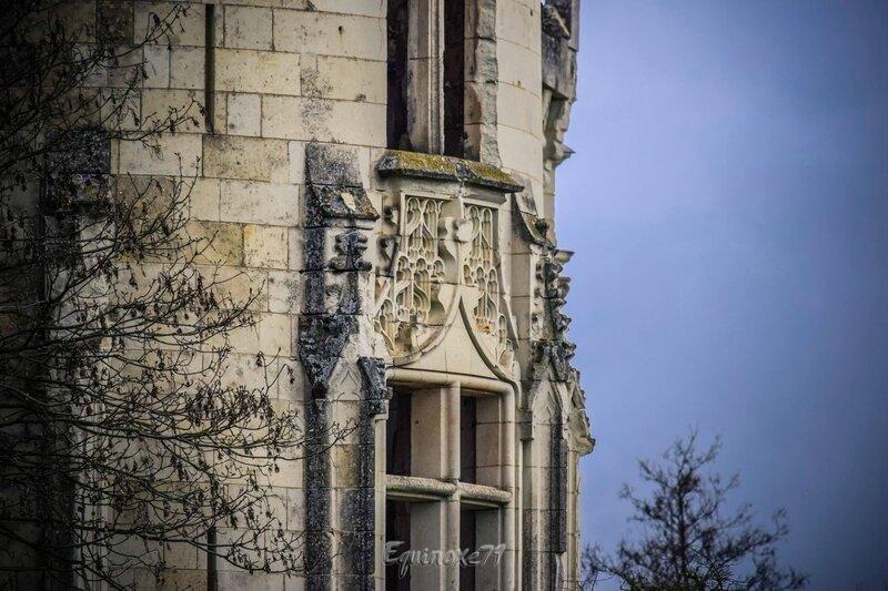le Château de la Mothe Chandeniers sauvé (5)