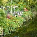 Galway, jardin bucolique