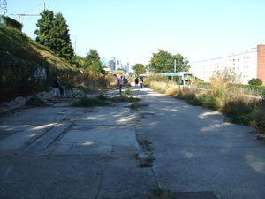 Jardins suresnes 15-09-12 010