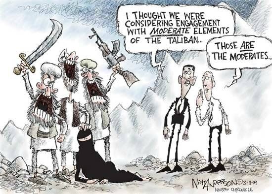 cartoon_moderate_taliban