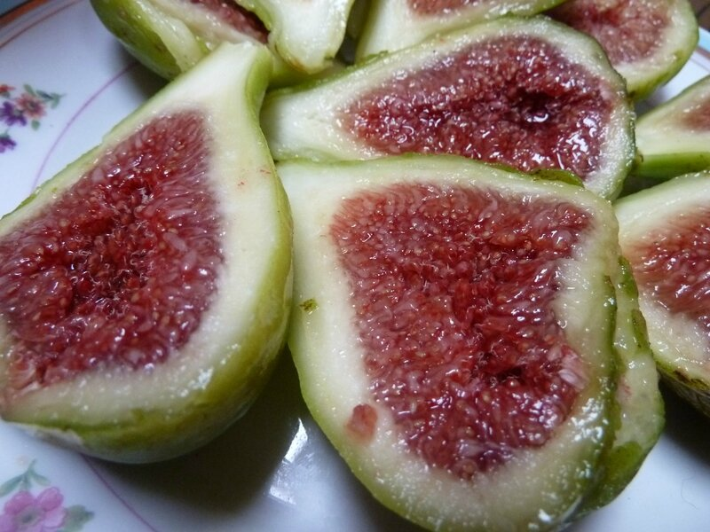 10-figues (1)