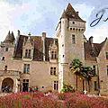 La fauconnerie du château des milandes