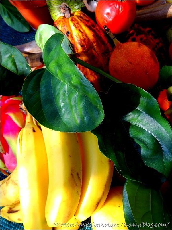 Fruits exotiques (24)