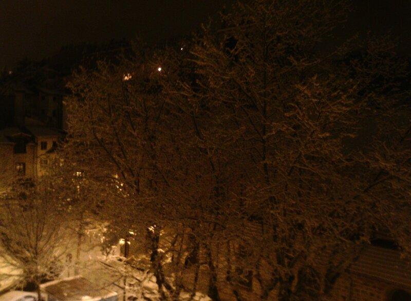 neige 15 janvier 2017 (03)