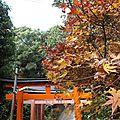 L'arbre à la feuille rouge et kannon aux 1000 bras