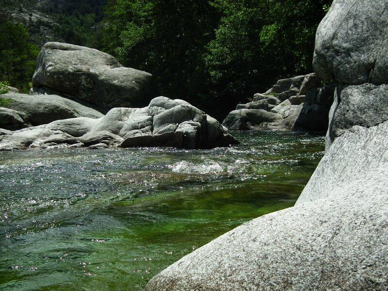 Pique-nique au bord de la rivière (31)