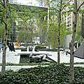 MOMA (1)