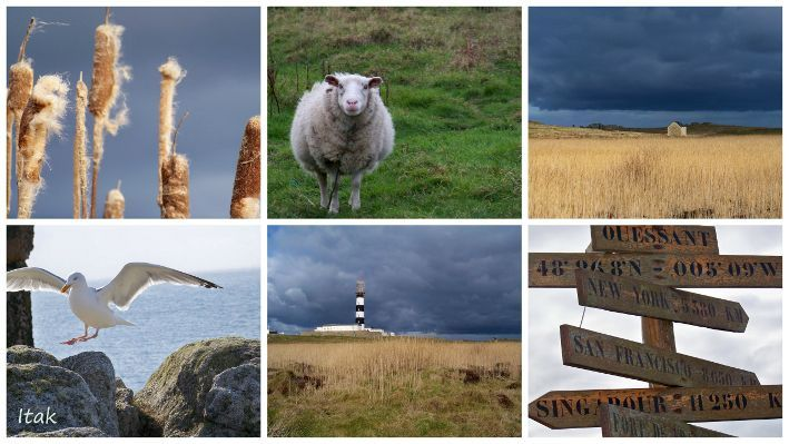 ouessant montage1