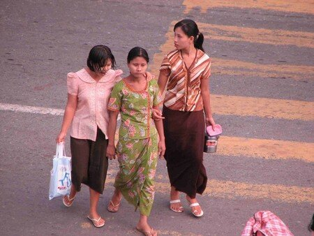 Birman_100___5_