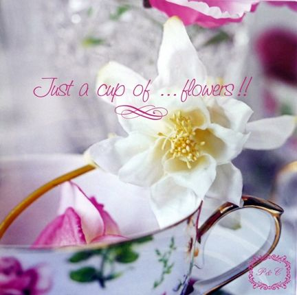 just_a_cup_of_flowers_____B
