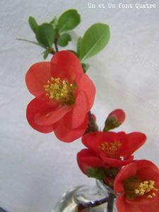 Poisson d'avril (4)