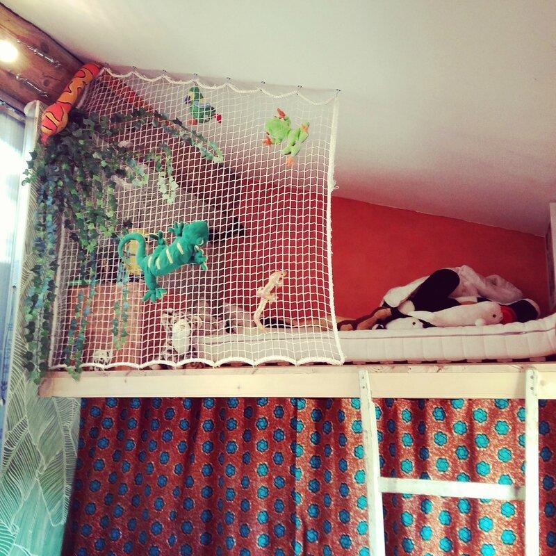 Chambre garçon jungle