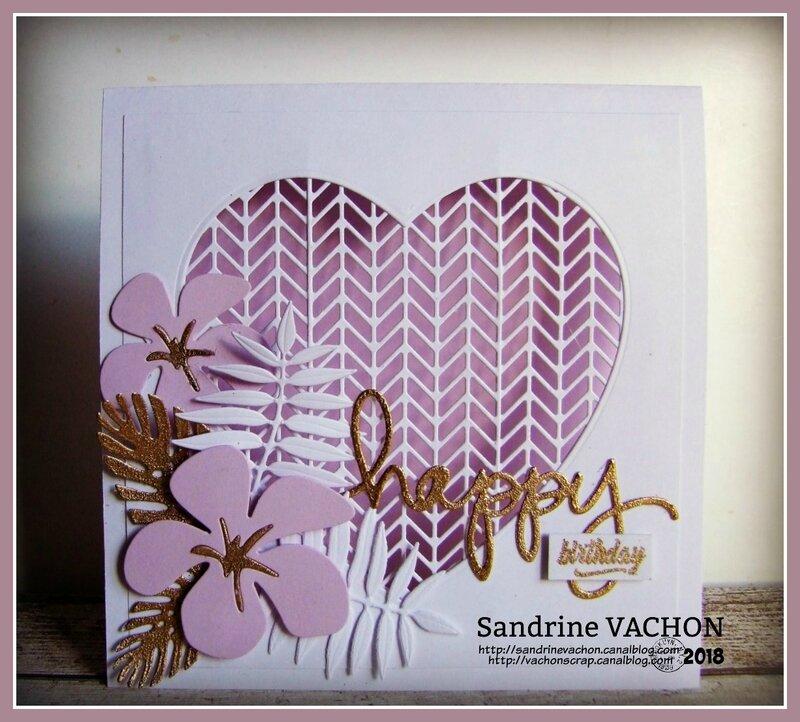 Sandrine VACHON défi 522 PCC (1)