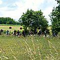 RandoBaie 2014 - balade équestre sur la piste des JEM (139)