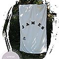 couverture_james_1