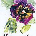 Anne B fleurpenseemedium_lorrainepensee 3
