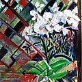 Orchidée devant ma fenètre 10-04-2017 11-42-35 - Copie