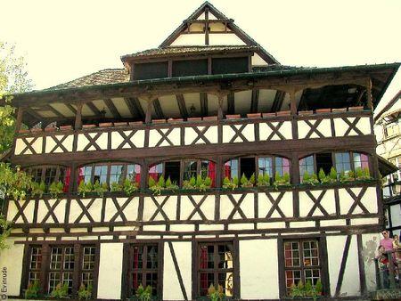 Evin_Strasbourg_2008_006