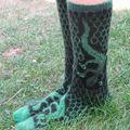 lizard socks 1