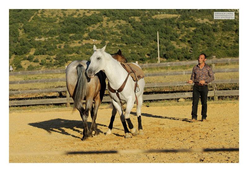 hotos JMP©Koufra 12 - El Rancho - Le Mas de Sisco - 25082020 - 0538
