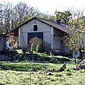 Segonzac - Saint-Robert (Corrèze - 19)
