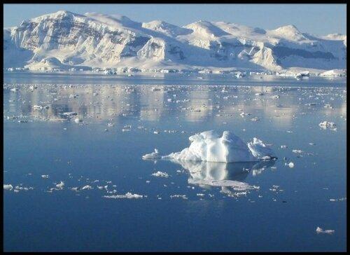 antarctique 12