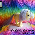 JONQUILLE (Lemondrop)