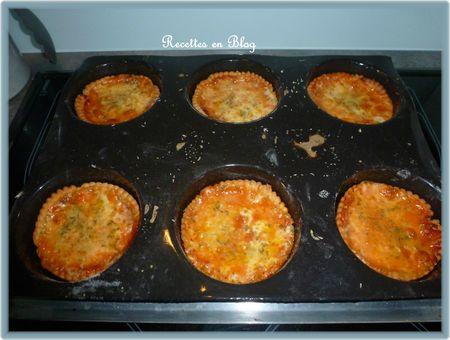 tartes à la tomate mozza jambon2