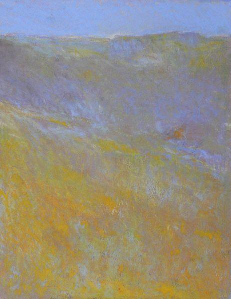 lichen orange sur le rocher
