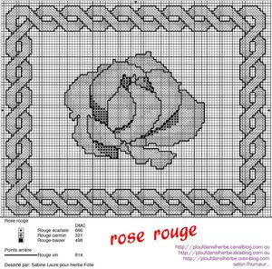 pdx_rose-rouge_grille