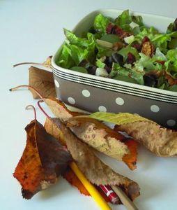 saladedesvignes2