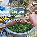 Rituel de desenvoutement puissant medium voyant marabout safari tidiane +229 63 39 25 31