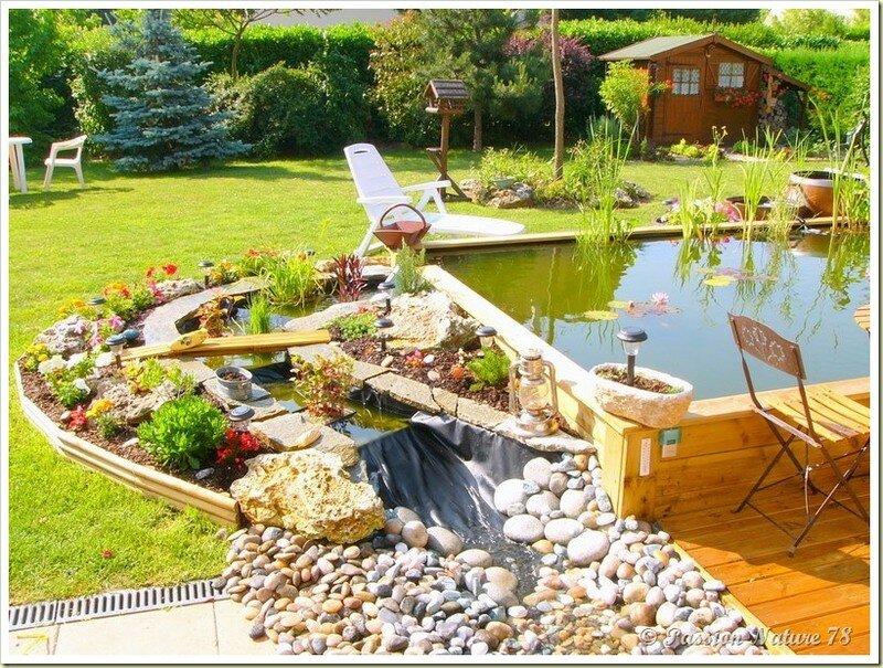 Le bassin...Mon petit coin de paradis (9)