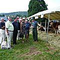 Masevaux-niederbruck: le monde rural à portée de main