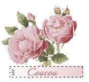ob_6fcb00_bouquet-rose