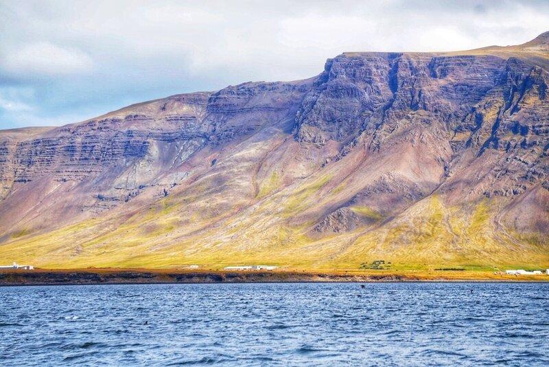 sortie bateau reykjavik 2