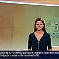 margauxdefrouville03.2014_01_10_journaldelanuitBFMTV