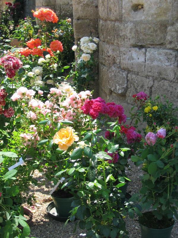 Prieuré de St Cosme - 22 mai 2010